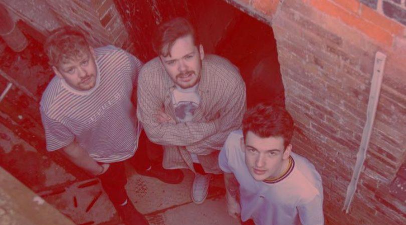 The Lids